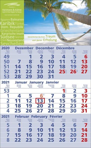 3-Monats-Wandkalender Standard 2b